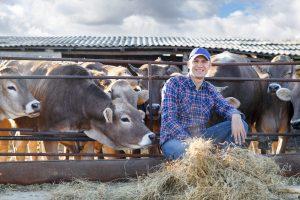 McKinney Tx Farm and Home Insurance