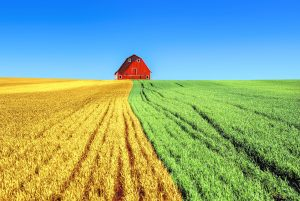 Farm Insurance Paris Tx