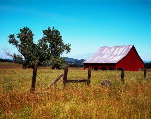 Insurance for Farmers Bonham Tx
